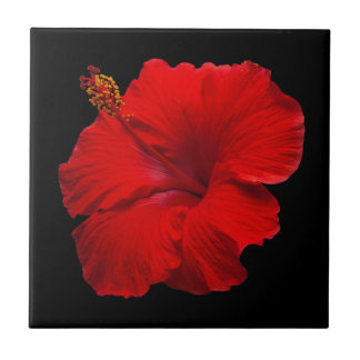 Red Hibiscus on Black- Customized Template Ceramic Tiles