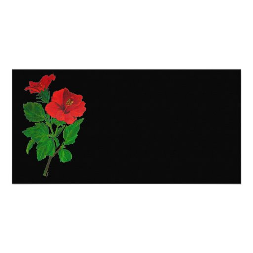 Red Hibiscus Photo Greeting Card