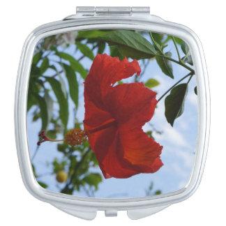 Red Hibiscus Vanity Mirror