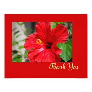 Red Hibiscus Thank You Card