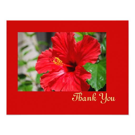 Red Hibiscus Thank You Card Invites