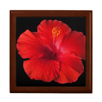 Red Hibiscus Tropical Flower Flowers Floral Jewelry Box