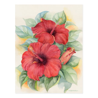 Red Hibiscus Tropical Flower Painting - Multi Post Cards
