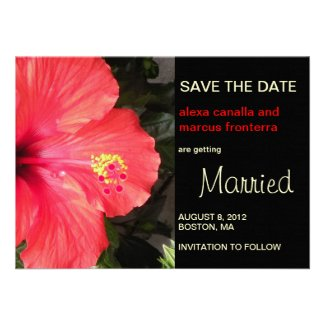 Red Hibiscus Wedding Save the Date Card Custom Announcements