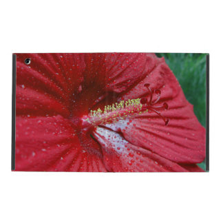 Red Hibiscus With Raindrops iPad Cases