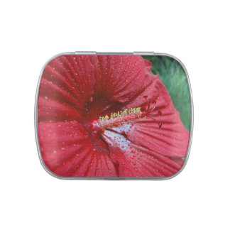 Red Hibiscus With Raindrops Jelly Belly Candy Tins