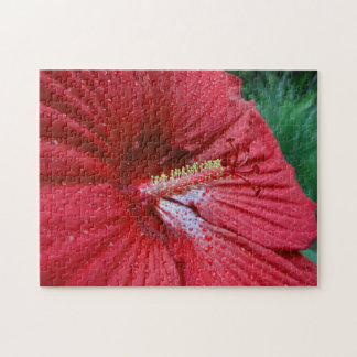 Red Hibiscus With Raindrops Jigsaw Puzzle