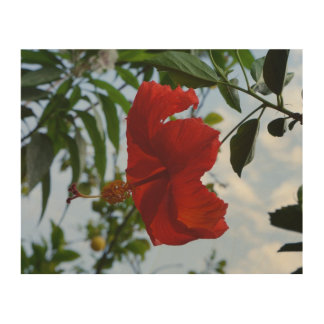 Red Hibiscus Wood Wall Art