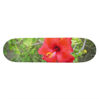 Red Hibiscus Yellow stigma Skateboard