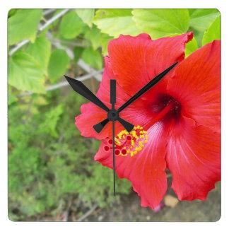 Red Hibiscus Yellow stigma Square Wall Clock