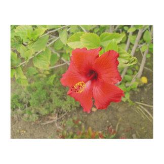 Red Hibiscus Yellow stigma Wood Wall Decor