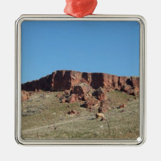 Red Hill Metal Ornament