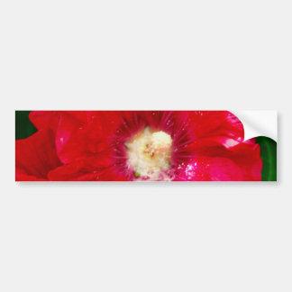 Red Hollyhock Flowers Bumper Sticker