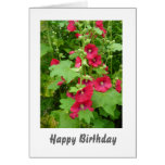 Red Hollyhocks Birthday Card