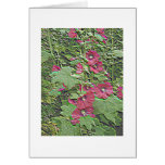 Red Hollyhocks in Relief - a Notecard Greeting Cards