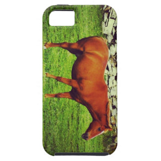 Red horse iPhone 5 covers
