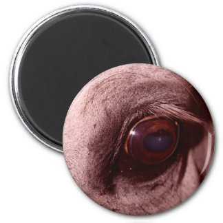 Red Horse Design Refrigerator Magnets