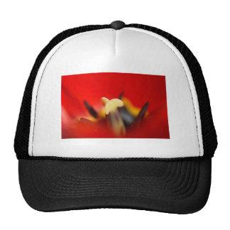 red hot dream trucker hat