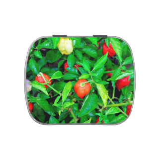 red hot peppers in green leaves candy tin