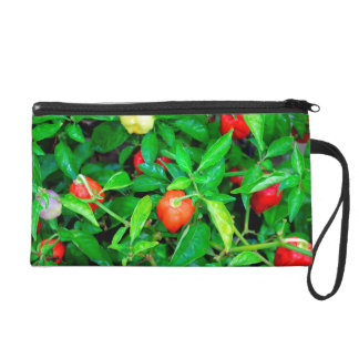 red hot peppers in green leaves wristlet