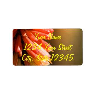 Red Hot Poker flower Labels