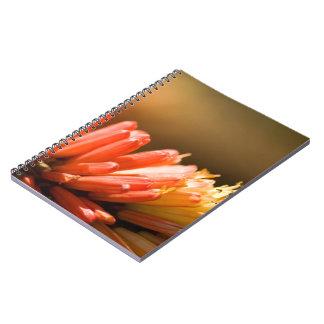Red Hot Poker flower Spiral Note Books