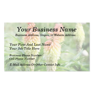 Red Hot Poker Plant Business Card