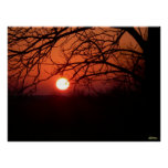 Red Hot Sunset Poster
