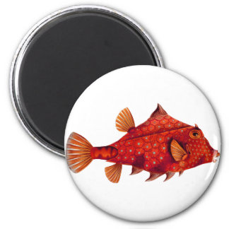 Red Humpback Turretfish 2 Inch Round Magnet