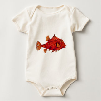 Red Humpback Turretfish Baby Creeper
