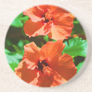 Red Hybiscus Drink Coaster