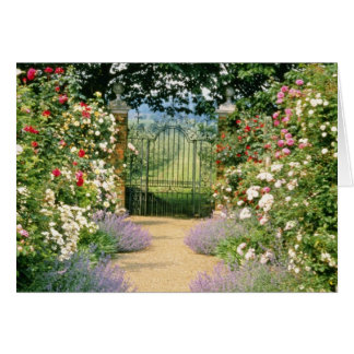 Red Hybrid Rose-Lined Path To Gate, Underplanted W Greeting Cards