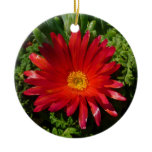 Red Ice Flower Colorful Carpet Plant Ceramic Ornament
