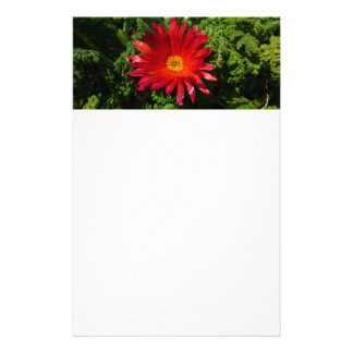 Red Ice Flower Colorful Carpet Plant Stationery