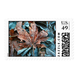 red iced leaf stamps