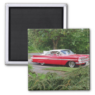 red impala with greenery background 2 inch square magnet