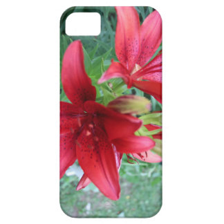 Red Imperial Lilly iPhone SE/5/5s Case