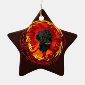 Red in the globe ceramic star decoration