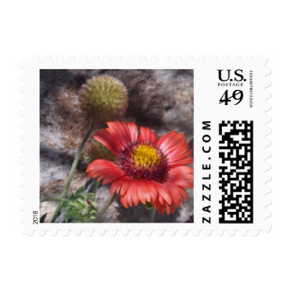 Red Indian Blanket Postage Stamps