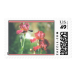 Red Iris Postage Stamps