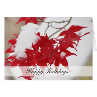 Red Japanese Maple Holiday Card