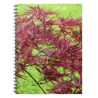 Red japanese maple leaves on green background spiral notebook