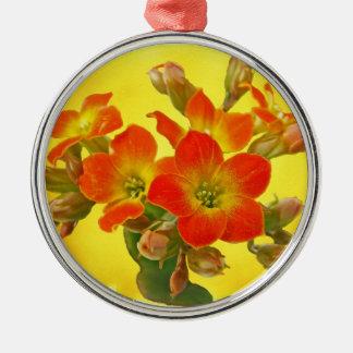 Red Kalanchoe - Succulent Sunshine Metal Ornament