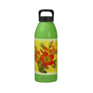 Red Kalanchoe - Succulent Sunshine Drinking Bottle