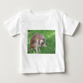 Red Kangaroo Baby T-Shirt