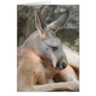 Red Kangaroo Greeting Card