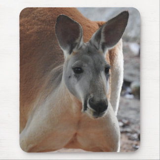 Red Kangaroo Mousepad