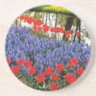 Red Keukenhof Gardnes, Holland flowers Beverage Coaster