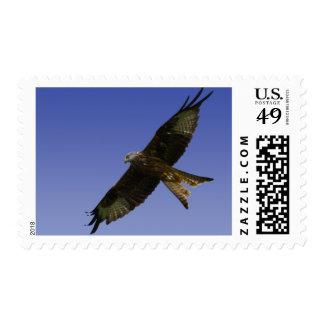 Red Kite  1 Postage