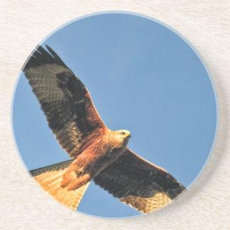 Red Kite Bird of Prey Drink Coasters